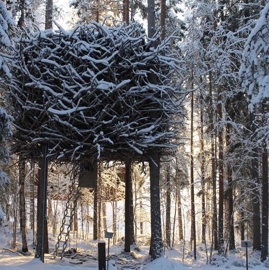 ORIGINAL GLAMPING - LUXURY CAMP WORLDWIDE - NUUK FJORD - CANADA - TREE HOTEL - SWEDEN